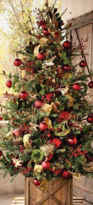 Fruits adorned tree